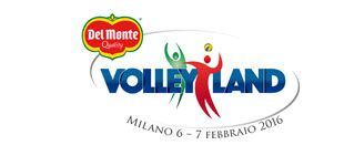 Volley Land